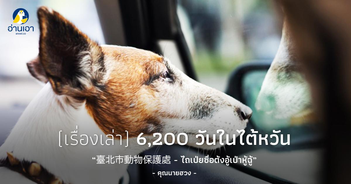 臺北市動物保護處 – ไถเป่ยซื่อต้งอู้เป่าหู้ฉู้