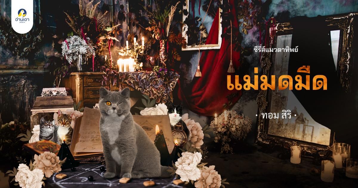 """ซีรี่ส์แมวตาทิพย์ """"แม่มดมืด"""" บทที่ 3 : หลอนผีหรือหลอนยา"""